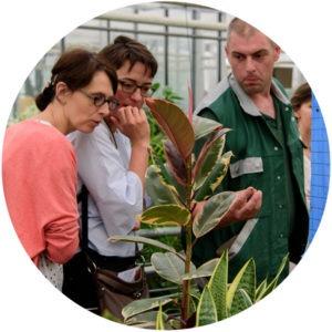 Développement durable au CHU de Lille