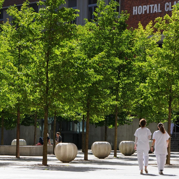 Hôpital Huriez Lille cour intérieure