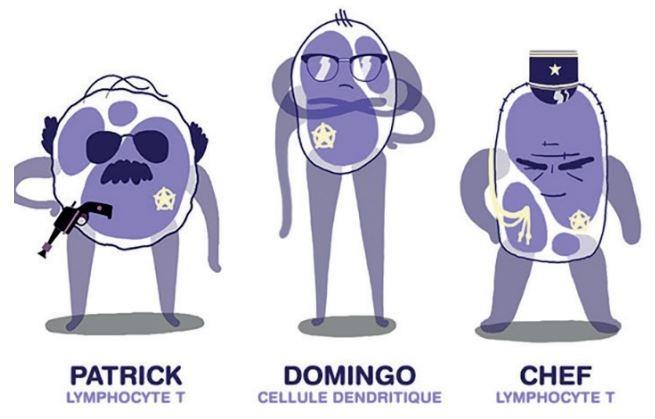 immunotoons
